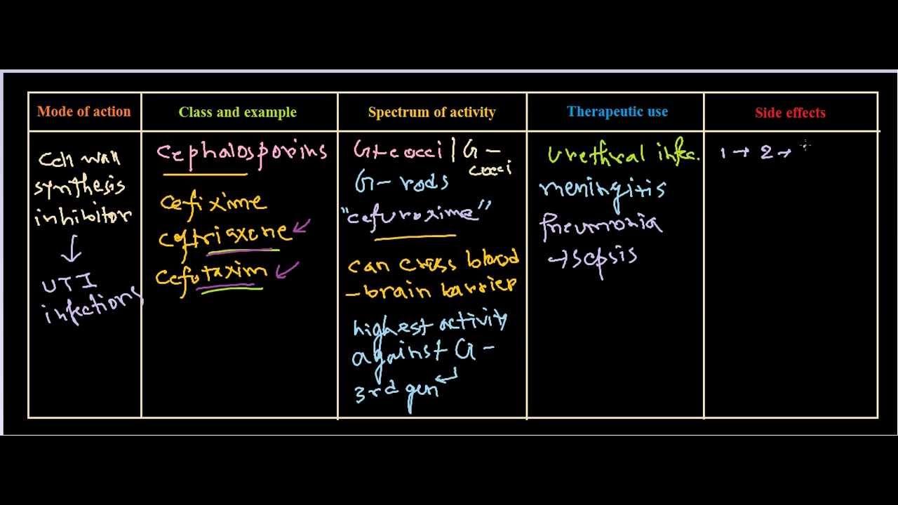 cephalosporins