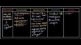 antibiotics pharmacology