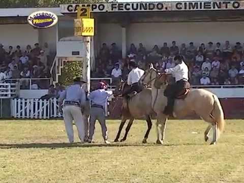 Mas Caballos Bolivar 2015, Jineteada Bastos y Encimera y Montas Especiales