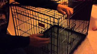 Breaking Down The Dog Crate 101 (for Grandpa)