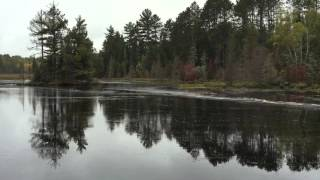 Beaver Dam Collapse