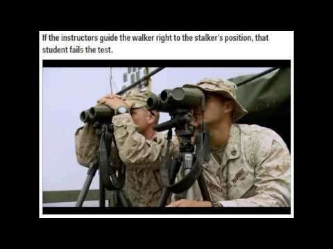 Marine Scout Sniper Training Course