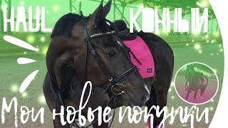 Конный хоул) Обзор на последнии конные покупки.