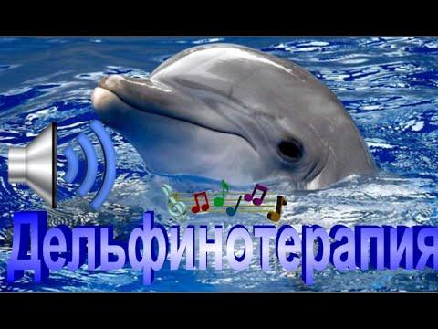Дельфинотерапия (лечение звуком