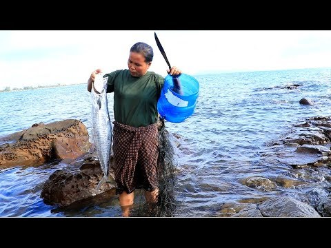 Survival In The Rainforest - Find Big Fish At The Sea - Eating Delicious