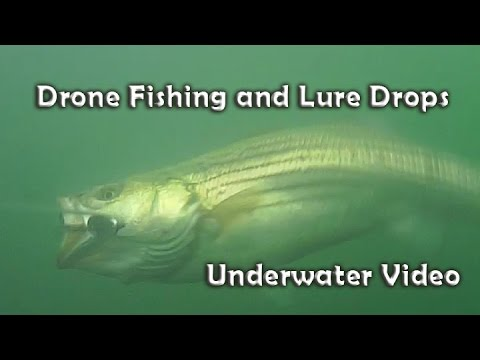 Drone Fishing Lure Drops - Underwater Video