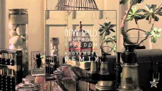 New Build - Luminous Freedom (rRoxymore Remix)