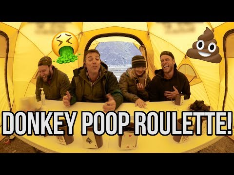 Donkey Poop Roulette!