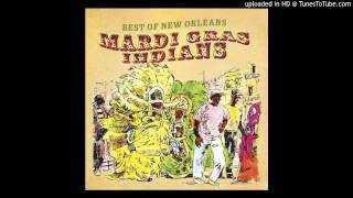 Indian Red - Treme Brass & Indian Band