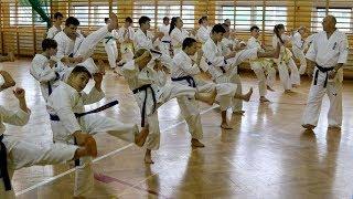 Egzaminy w Ostrołęckim Klubie Karate Kyokushin