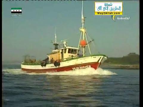 ( أسواق السمك العالمية ) : : الأرض الآن : : المجد الطبيعية