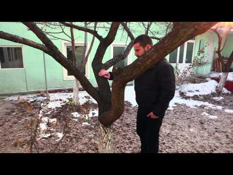 ՌԱԳՈՒԻԼ - ՀԵՂԻՆԱԿԱՅԻՆ ՖԻԼՄ / RAGUEL - short film/full HD/ 2015