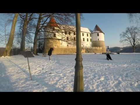 Sevnica castle and a Bernese Mountain Dog