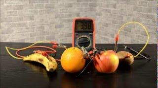 Фруктовая батарейка/Fruit battery