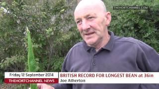NEWS: Runner Bean sets New British Record
