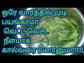 FastHair growth in Tamil/home remedy for long hair/Best hair loss remedy/quick hair growth in 1 week Mp3