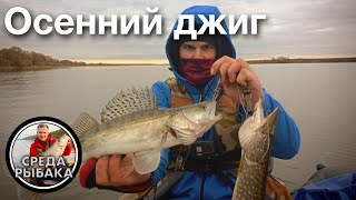 Рыбалка в Рязанской области Выбор места приманки Рыбалка с лодки Ловля судака на джиг осенью