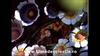Veronica -  Mai demult, hoinaream - Cantecul Greierelui