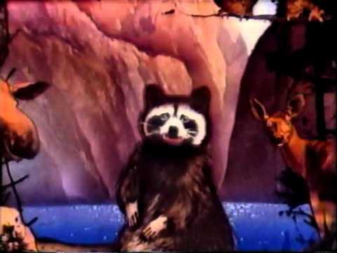 Singing Racoon Rita PSA 1979