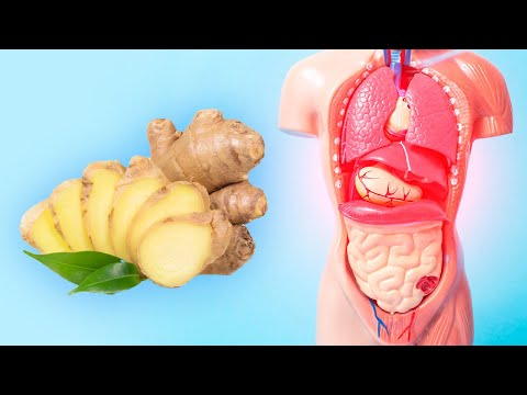 Thumbnail: Health Benefits of Ginger - What is ginger good for?