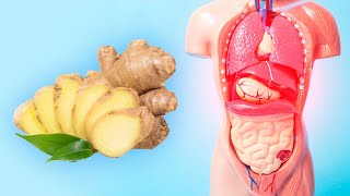 Health Benefits of Ginger - What is ginger good for?
