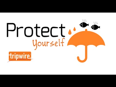 Tips to Protect Yourself Against Phishing Scams