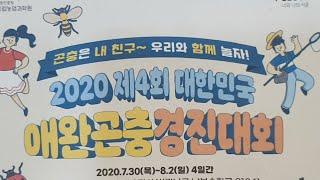 [실시간] 제4회 애완곤충 경진대회+9000명 이벤트!