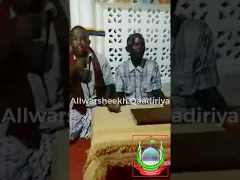 Mowliidka Nabiga Csw, Warshiikh 2016