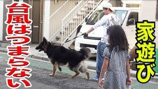 台風18号日本列島横断で折角の週末台無しですね ハスキー犬クッキー君 ...
