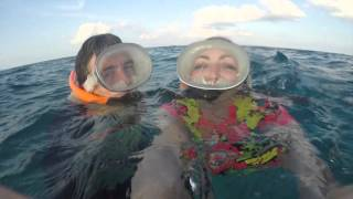Rum, Reggae + Snorkel in Key West