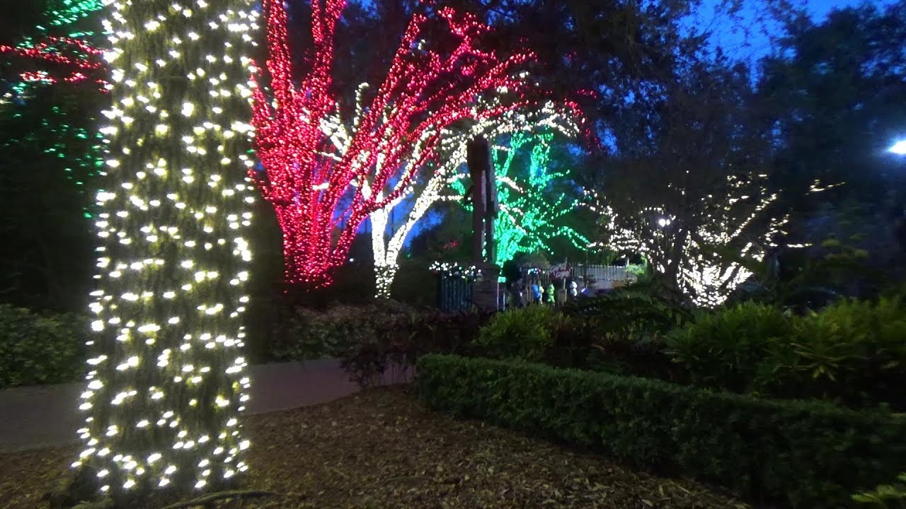 Christmas Town Florida.Take Me Down To Christmas Town Busch Gardens Tampa Fl