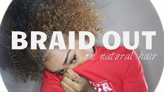 My Heatless Naturally Curly Hair Braid Out! ☯ Thumbnail