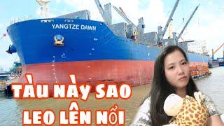 Hành trình vào cảng Phú Mỹ & gặp nhiều tàu buôn vài chục nghìn tấn