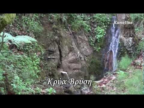 ΟΙ ΒΡΥΣΕΣ ΤΟΥ ΔΡΥΜΟΥ - ΜΟΣΤΙΤΣΙ ΚΑΛΑΒΡΥΤΩΝ ΑΠΟ KANELLOS