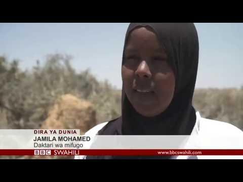 Somalia's Female Vets