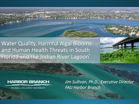 Dr. James Sullivan talks Harmful Algal Blooms