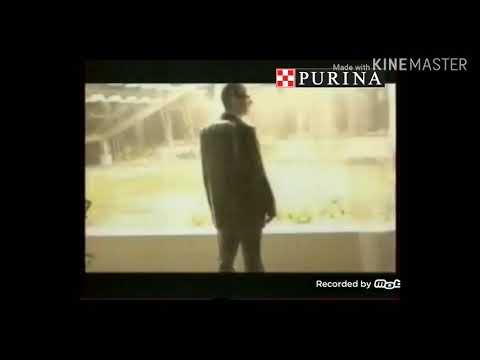 Анонс реклама Purina Tv 2019