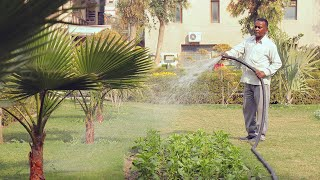 Full shot of a gardener watering plants in a park