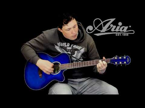 Aria TG-1 Acoustic guitar demonstration