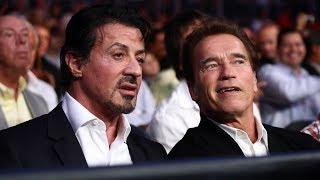 When Celebrities Watch a Boxing Match