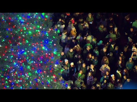 Thousands cheer as Holiday Tree lit in Portland