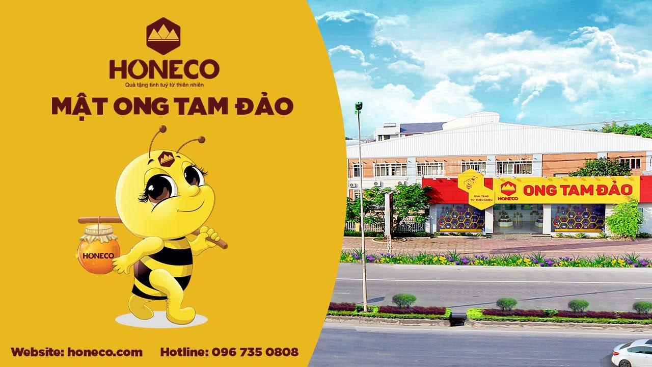 Giới thiệu Công ty Ong Tam Đảo Honeco