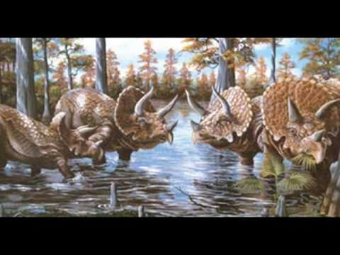 Tribute to Ceratopsids
