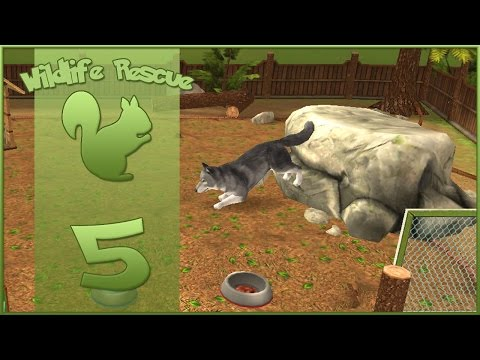 Wildlife Rescue! || Rescue Lessons - Episode #5