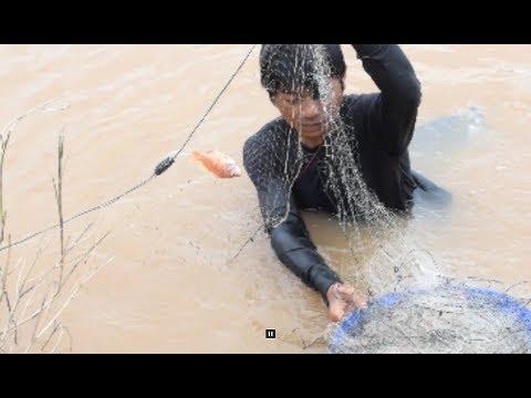 net fishing , catching fish in mekong river , savannakhet