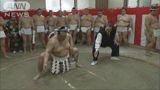 大相撲第72代横綱に昇進した稀勢の里の「綱打ち」が行われました。 新横...