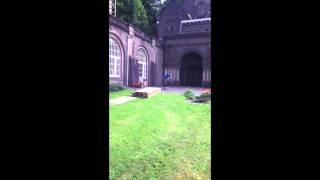 Julian Daams Ledge Footage