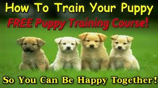 ▶▶▶ How To Train Your Puppy [ Complete Training ] Get This Free Course! ====