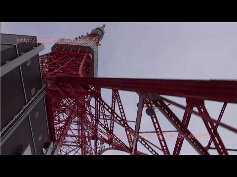 Japan Trip 2014 Tokyo Tower Stroll in Shibakōen Minato-ku