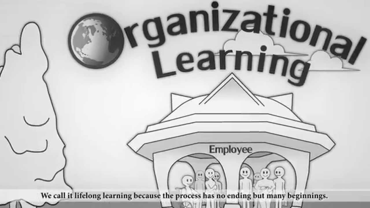 organisational learning Knowledge management and organisational learning this 2009 overview paper  by william king takes a broad look at the links between knowledge.